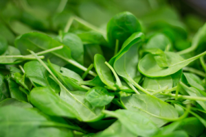 fresh eating healthy spinach early gardening grow your own vegetables veggies BC harvest