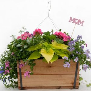 Speak with our Florists