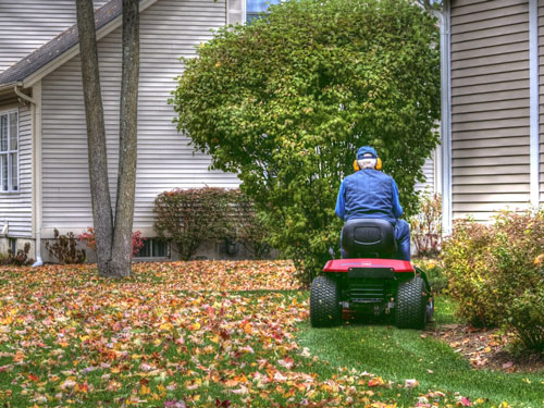 Cutting and Maintaining Your Lawn