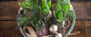 gardening gift