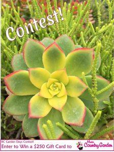Minter Garden Days Contest