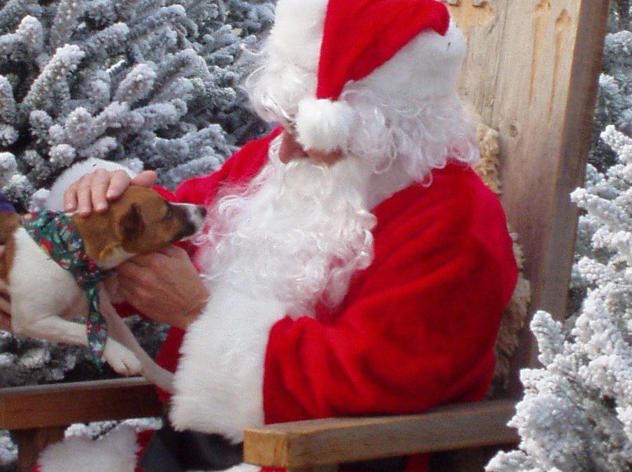 SPCA Pet Photos with Santa
