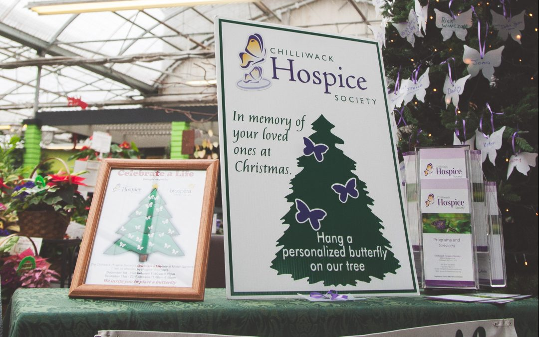 Chilliwack Hospice Celebrate a Life Tree