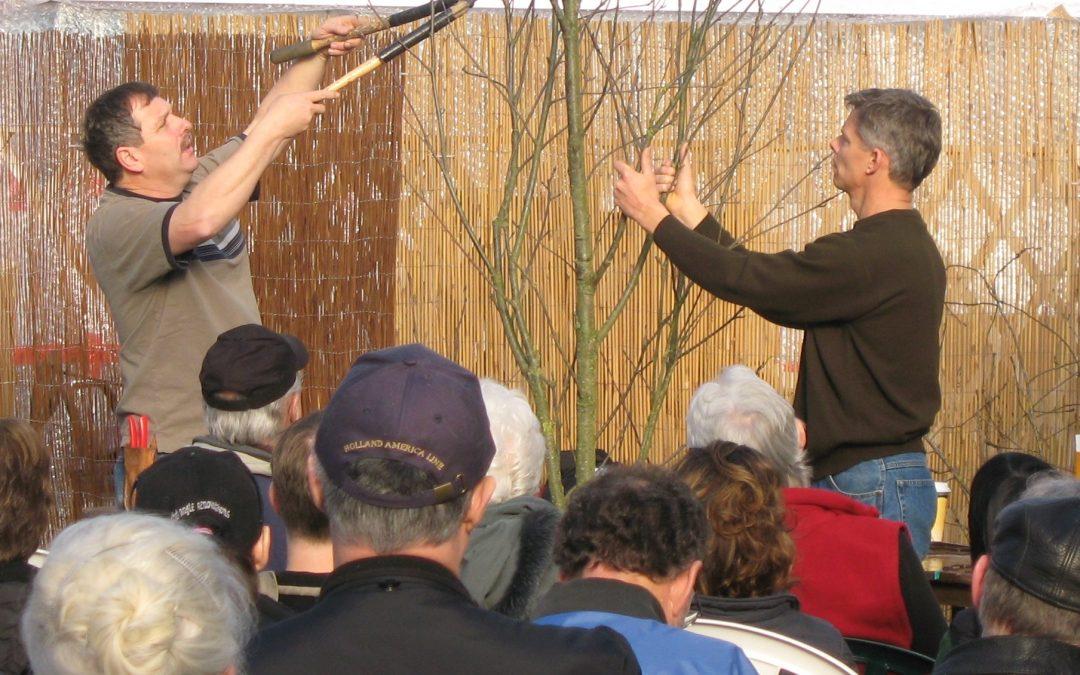 Pruning Seminars: Pruning 101