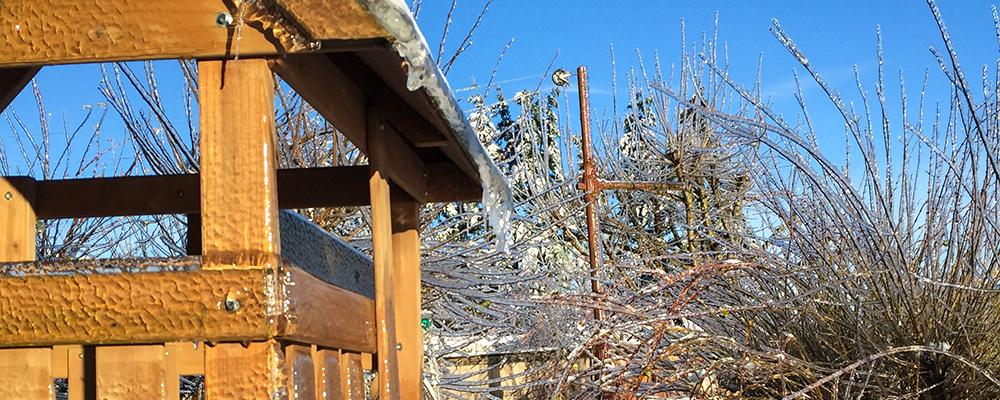 kids-and-the-winter-garden-header-backyard-winter