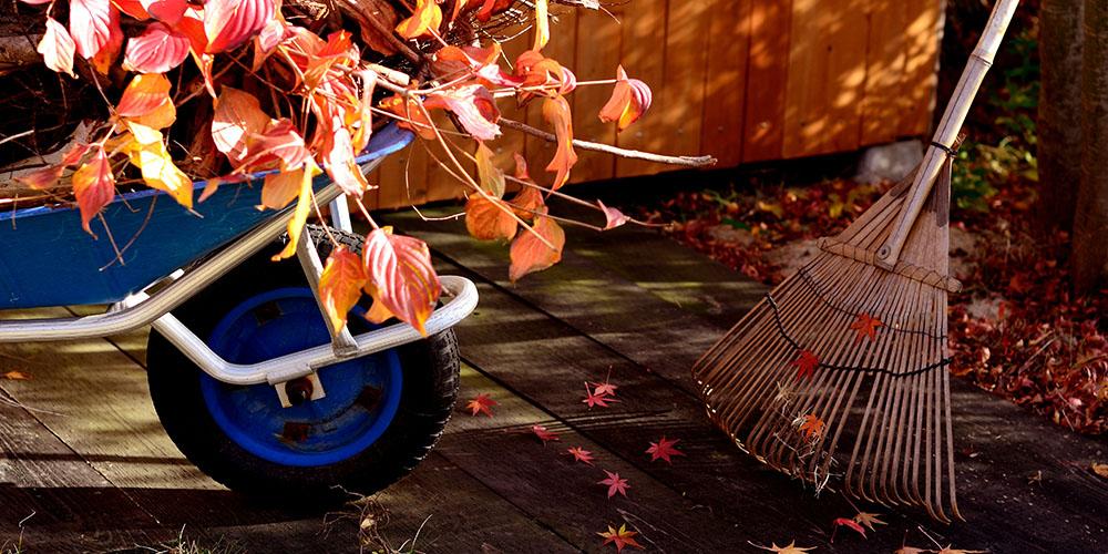 Your October Garden Checklist