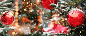 christmas ornaments Minter Country Garden
