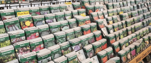 seed packs Minter Country Garden