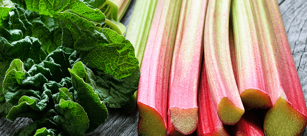 Rhubarb Growing Guide