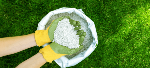 woman holding fertilizer in hands Minter country garden